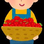 今日はイチゴの日!🍓🍓